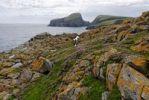 Thumbnail View of Sheep's Rock at Buness, South Haven, Fair Isle, Shetland, Scotland, United Kingdom, Europe