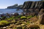Thumbnail Coast at the southern harbour of Fair Isle, Shetland, Scotland, United Kingdom, Europe