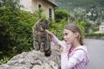 Thumbnail Girl, 8 years, caressing a cat, Deià, Mallorca, Majorca, Balearic Islands, Spain, Europe