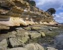 Thumbnail Colorful sandstone cliffs, Painted Cliffs, in the Maria Island National Park, Tasmania, Australia