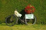 """Thumbnail Bike in front of a green hedge with red flowers and a sign """"Zimmer frei"""", """"rooms to let"""""""