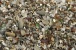 Thumbnail Glass shards smoothed by the sea at Glass Beach near Fort Bragg, California, USA