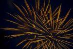 Thumbnail Fireworks