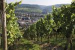 Thumbnail View from the vineyard on Ahrweiler and the Laurentiuskirche church of Ahrweiler, Bad Neuenahr-Ahrweiler, Rhineland-Palatinate, Germany, Europe