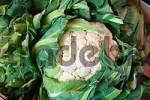 Thumbnail Cauliflower