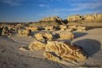 Thumbnail Cracked Eggs, landscape in the Bisti Badlands, Bisti Wilderness Area, New Mexico, USA