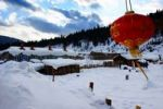 Thumbnail Snow country, Shuangfeng forest farm, Heilongjiang Province, Northeast, China, Asia