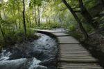 Thumbnail Wooden footbridge over a stream in Plitvice Lakes National Park, Plitvice Jezera, Croatia, Europe