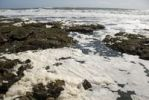 Thumbnail Foam, pollution, sea, United Kingdom, Europe