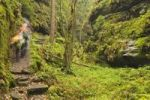 Thumbnail Hikers in the Teufelsgrund gorge, autumn, Saxon Switzerland, Saxony, Germany, Europe