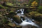 Thumbnail Ilse brook with rapids, Ilsefaelle waterfalls in autumn, Ilsetal valley, Harz region, Saxony-Anhalt, Germany, Europe