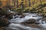 Thumbnail Ilse brook in autumn, rapids, Ilsetal valley, Harz region, Saxony-Anhalt, Germany, Europe