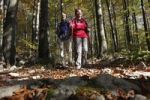 Thumbnail Hikers on forest trail, Risnjak National Park, Gorski Kotar region, Croatia, Europe