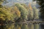 Thumbnail Autumnal floodplains on the Kupa river, Risnjak National Park, Gorski Kotar region, Croatia, Europe