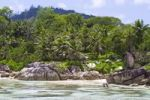Thumbnail Granite rocks and coconut palms, L'Islettes island, Mahe, Seychelles, Africa, Indian Ocean