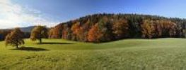 Thumbnail Herbst, Tegernsee, Finsterwald, Bavaria, Germany, Europe