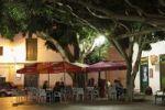 Thumbnail Plaza Leon y Castillo, laurel trees, Haria, Lanzarote, Canary Islands, Spain, Europe