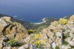 Thumbnail Overlooking the sandy beach below Lubenice on Cres, Croatia, Europe