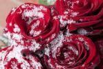 Thumbnail Red roses covered in snow crystals in winter