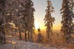 Thumbnail Sunset on Mt. Teufelsmuehle, Black Forest, Baden-Wuerttemberg, Germany, Europe