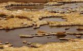 Thumbnail Salt lake, Atacama desert, Chile, South America