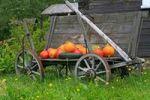 Thumbnail Old cart, pumpkins as decoration