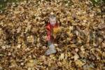 Thumbnail Nine-year-old boy in the autumn foliage