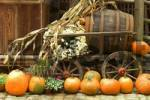 Thumbnail different pumpkins for decoration and cooking in front of a wooden cart