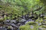 Thumbnail Dalegarth for Booth, GBR, 20. Aug. 2005 - Little runnel in Eskdale area in the Lake District.