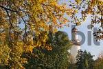 Thumbnail autumn leaves in front of the White Tower, the emblem of the city, spa Bad Homburg, Hesse, Germany