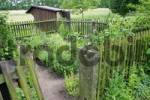 Thumbnail Little herbs garden with a wodden fence