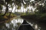 Thumbnail Backwater tour on a tributary of the Poovar River, Puvar, Kerala, South India, India, Asia