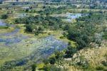 Thumbnail Aerial view, Okavango Delta, Botswana, Africa