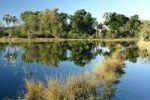 Thumbnail Okavango Delta, Botswana, Africa