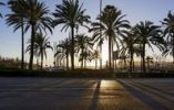 Thumbnail Evening atmosphere, sea, promenade, Avinguda de Gabriel Roca, Palma de Mallorca, Majorca, Balearic Islands, Spain, Europe