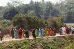 Thumbnail Women in festive saris, festival, south of Hunsur, Karnataka, South India, India, South Asia, Asia