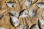 Thumbnail Fish laid out to dry, Alleppey, Backwaters, Kerala, India, South Asia, Asia