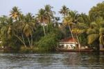 Thumbnail Pamba River, Backwaters near Alleppey, Alappuzha, Kerala, India, South Asia, Asia