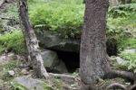 Thumbnail Bear's den, Mala Fatra National Park, Slovakia, Europe
