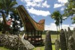 Thumbnail Ceremony site with megaliths and traditional Toraja houses, Kalimbuang Bori', near Rantepao, Sulawesi, Indonesia, Southeast Asia