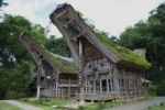 Thumbnail Ke'te Kesu' village with traditional Toraja houses near Rantepao, Sulawesi, Indonesia, Southeast Asia