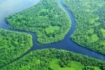 Thumbnail Estuary with delta and tropical vegetation, aerial view, Nicaragua, Central America