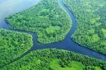 Thumbnail Flussmündung mit Deltabildung und tropische Vegetation, Luftbild, Nicaragua, Mittelamerika