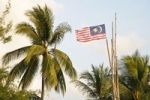 Thumbnail Palm trees and Malaysian national flag, Pulau Redang island, Malaysia, Southeast Asia, Asia