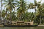 Thumbnail Houseboat in front of palm trees, Kerala backwaters, Kochi, Kerala, India, Asia