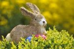 Thumbnail Easter Bunny, figure with brightly coloured eggs