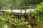 Thumbnail damaged and scruffy wooden bridge