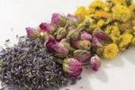 Thumbnail Dried flowers
