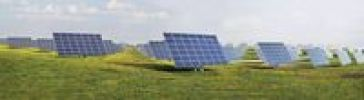 Thumbnail Solar energy park with solar modules or panels on a meadow with dandelions