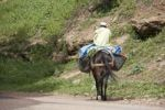 Thumbnail Man riding laden horse, Morocco, Africa
